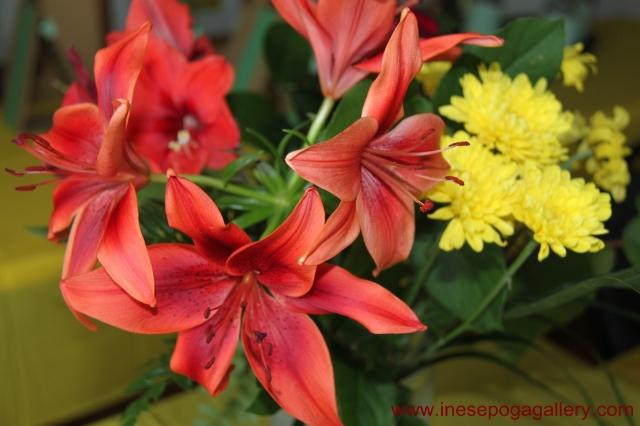 International Women's Day flowers 5
